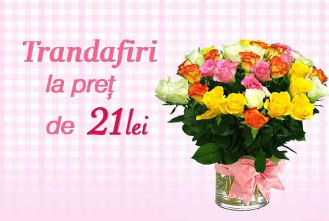 Ofertă Trandafiri la preț de 21 lei/buc