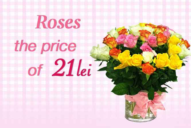 Offer. Roses at price of 21 lei/unit