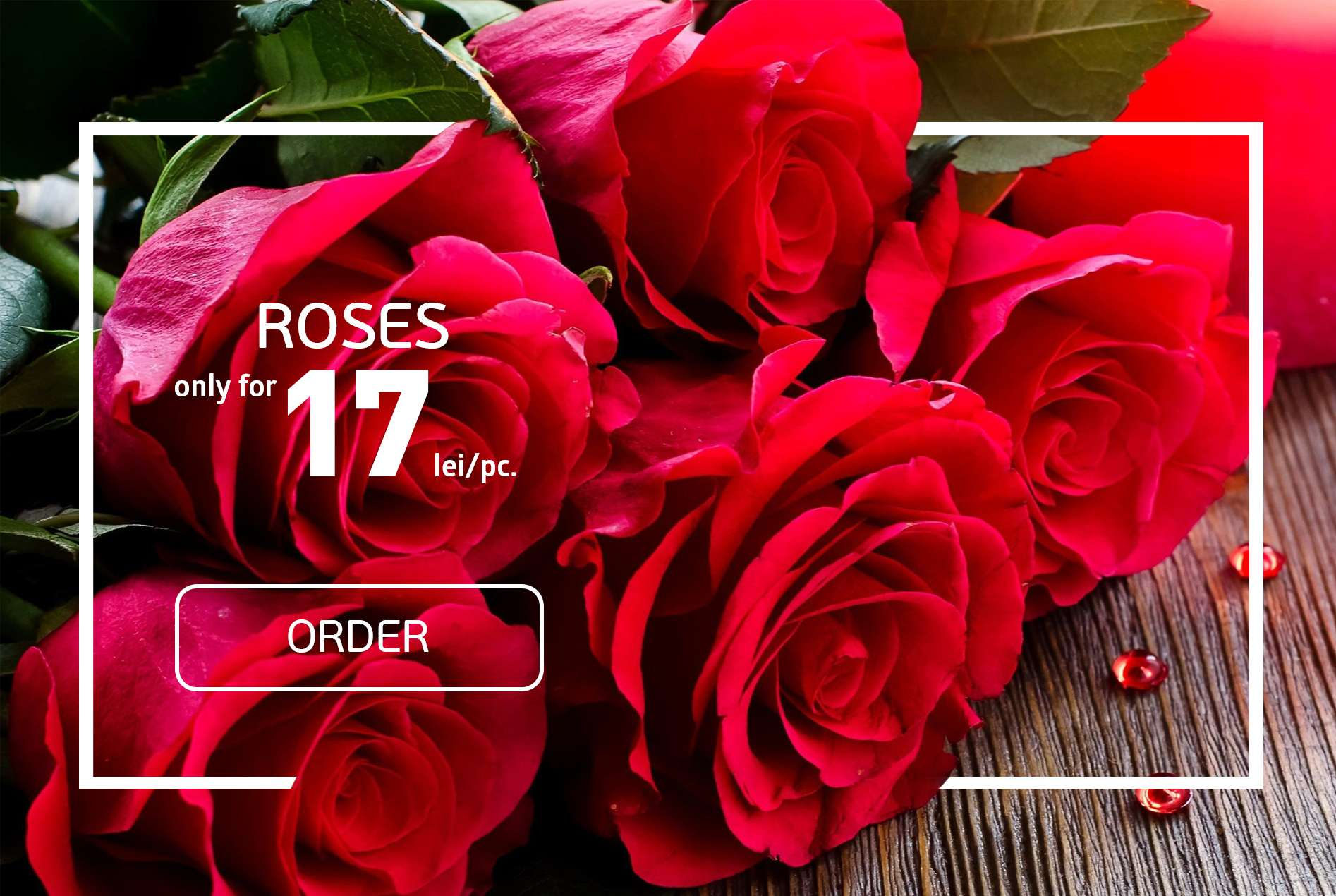 Offer. Roses at price of 17 lei/unit