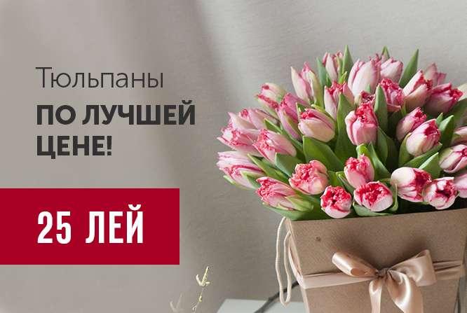 Предложение. Тюльпаны по 25 леев